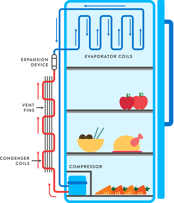 Fridge Circuit Diagram